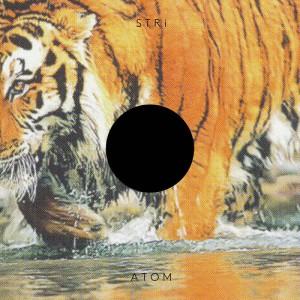 A T O M (album cover)