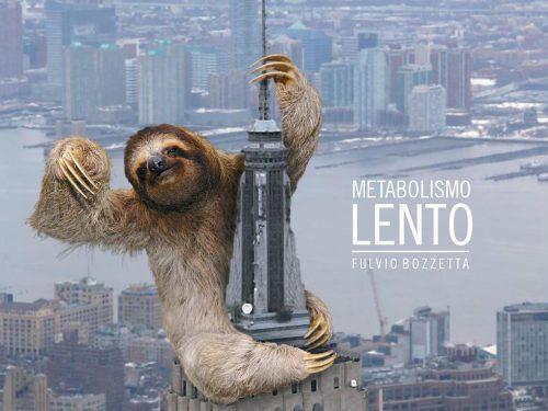 Fulvio Bozzetta – Metabolismo lento (Lademoto Records)