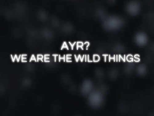 """ARE YOU REAL? Presenta """"WE ARE THE WILDS THINGS"""" Primo video tratto dall'album SONGS FROM THE IMAGINARY YOUTH (Sisma / Dischi Soviet Studio)"""