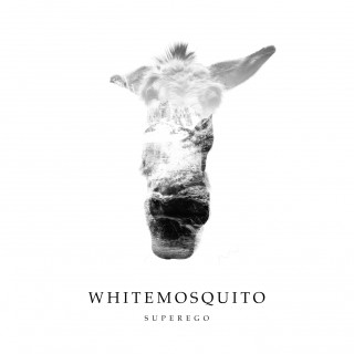 WHITE MOSQUITO presentano il loro nuovo video (Male in pillole) tratto dal disco SUPEREGO… Un brano di rock granitico con ficcanti aperture pop