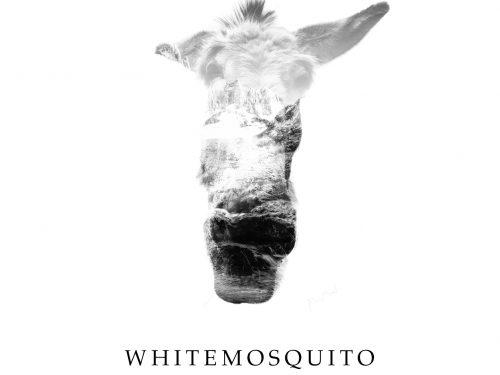 WHITEMOSQUITO – Superego  (OrzoRock Music)